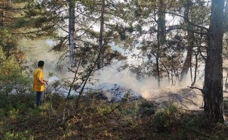 Yıldırım orman yangınlarına sebep oldu