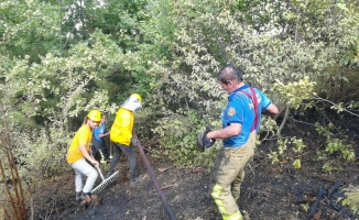 Bursa'da orman yangını paniği