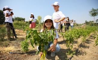 Çocuklar bostanı Başkan Erdem'le gezdi