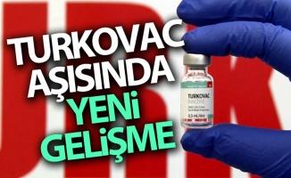 Yerli aşı TURKOVAC'ın uygulandığı 10 gönüllüde bir yan etki görülmedi