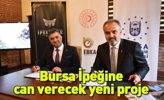 Bursa İpeğine can verecek yeni proje