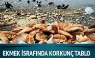'Günde 5 milyon ekmek israf ediliyor'