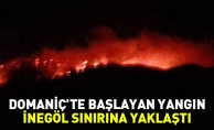 Domaniç#039;te başlayan yangın İnegöl sınırına yaklaştı