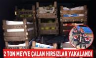 2 ton meyve çalan hırsızlar yakalandı