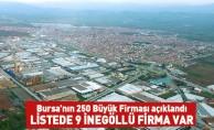 Bursa İlk 250'sinde 9 İnegöllü Firma Var