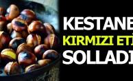 Fiyatı Kırmızı Eti Solladı! Kestane Kebabın Kilosu 75 Lira
