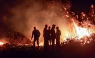 İznik'teki sazlık yangınına müdahale sürüyor