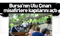 Bursa'nın Ulu Çınarı misafirlere kapılarını açtı