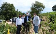 İnegöl'de sel mağduru köylere tohum desteği sağlanacak