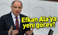 Efkan Ala'ya yeni görev!