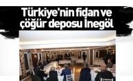 Türkiye'nin fidan ve çöğür deposu İnegöl