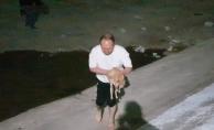 Gölete düşen kediyi boğulmaktan kurtardı