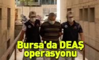 Bursa'da DEAŞ'ın Tarım ve Hayvancılık Emiri olarak görev alan bir kişi gözaltına alındı