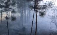 İnegöl#039;de korkutan orman yangını