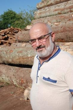 Yaşlı Ağaçlar Ormanları Çürütüyor