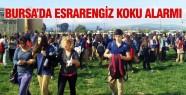 Bursa'da esrarengiz koku!