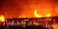 Eskişehir'de büyük yangın ! TOMA'lar