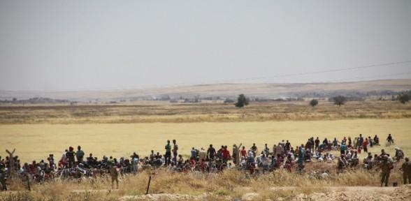 Türkiye'ye kaç Kobanili yaralı getirildi ?