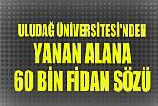 Uludağ Üniversitesi'nden Yanan Alana 60 Bin Fidan Sözü