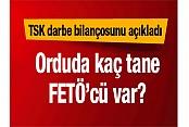 TSK darbecilerin sayısını açıkladı