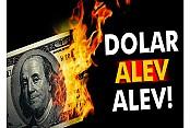 Dolar alev alev