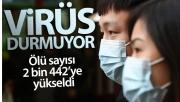 Çin'de salgından ölenlerin sayısı 2 bin 442'ye yükseldi