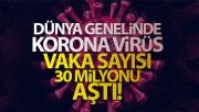 Dünya genelinde korona virüs vaka sayısı 30 milyonu aştı