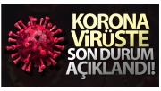 Son 24 saatte korona virüsten 153 kişi hayatını kaybetti